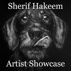 Sherif Hakeem is Awarded Artist Showcase Feature 2