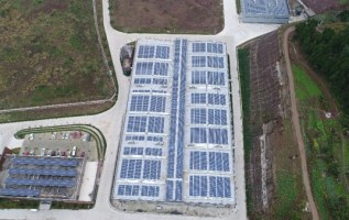 PFGHL Launches Photovoltaic Power Station Project to Promote Sustainable Development of Garment and Textile Industry 3