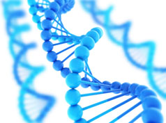 Biosimilar Market in Europe to Reach US$ 11,663.1 Million by 2024 – IMARC Group 2