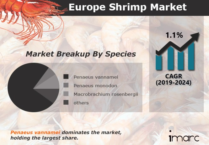 European Shrimp Market Report, Industry Overview, Growth Rate and Forecast 2024 – IMARC Group 6