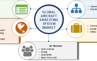 Bamboos Market – Global Industry Analysis, Size, Share, Growth, Trends and Forecast 2019 – 2025 2
