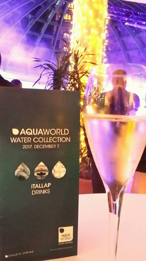 Partner party Aquaworld Resort Budapest hotela: Gala zabava za kraj godine!