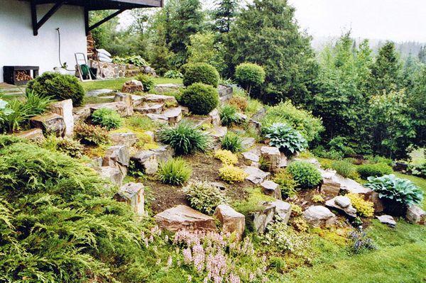Infos sur les arbustes de rocaille avant des les planter - Vivaces de rocaille avec photo ...