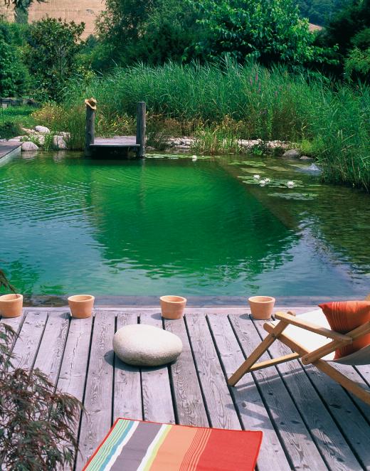 avoir une piscine naturelle dans sa maison. Black Bedroom Furniture Sets. Home Design Ideas