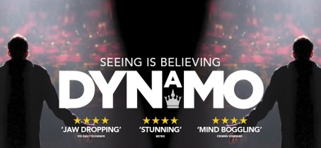 Dynamo-Seeing Is Believing