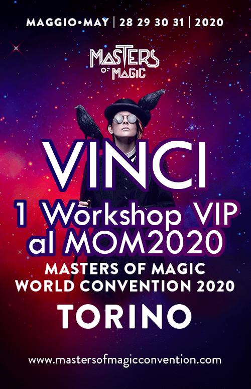 MOM2020 workshop VIP