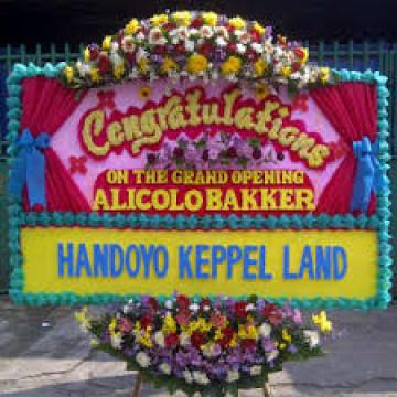 Toko Bunga Pondok Gede, Bekasi | Jual Karangan Bunga Congratulation