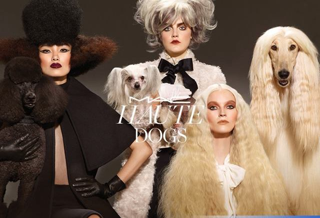 Mac-Haute-Dogs-Fall-2015