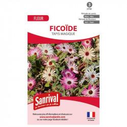https www pretajardiner com 92 variete graines fleurs
