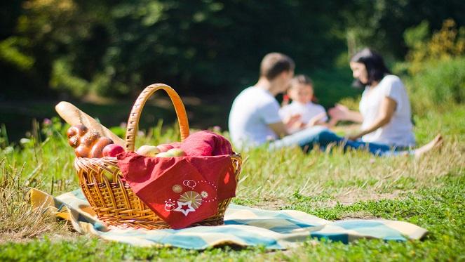 word picnic