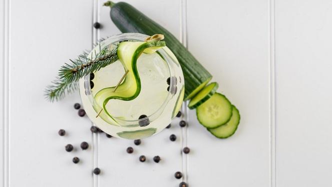 Food Gin Pairing Ginologist