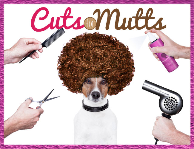 Cuts for Mutts Fundraiser