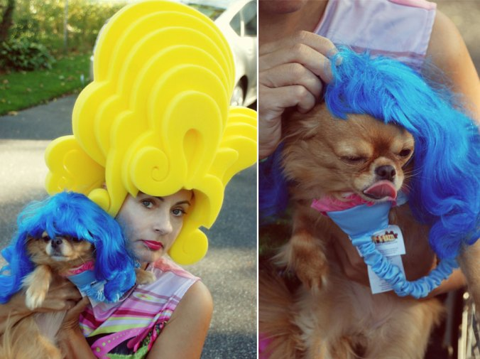 Chris March Wig and Chihuahua wig costume