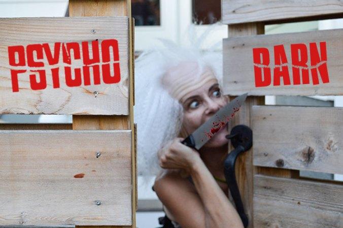Psycho Barn - Pretty Cripple