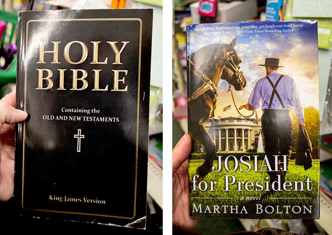 books at Dollar Tree store