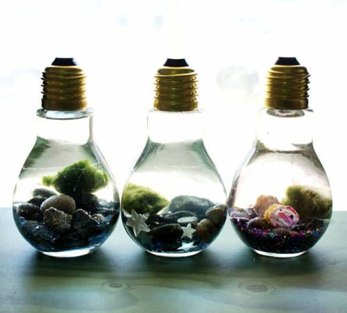 DIY Light Bulb Aquarium