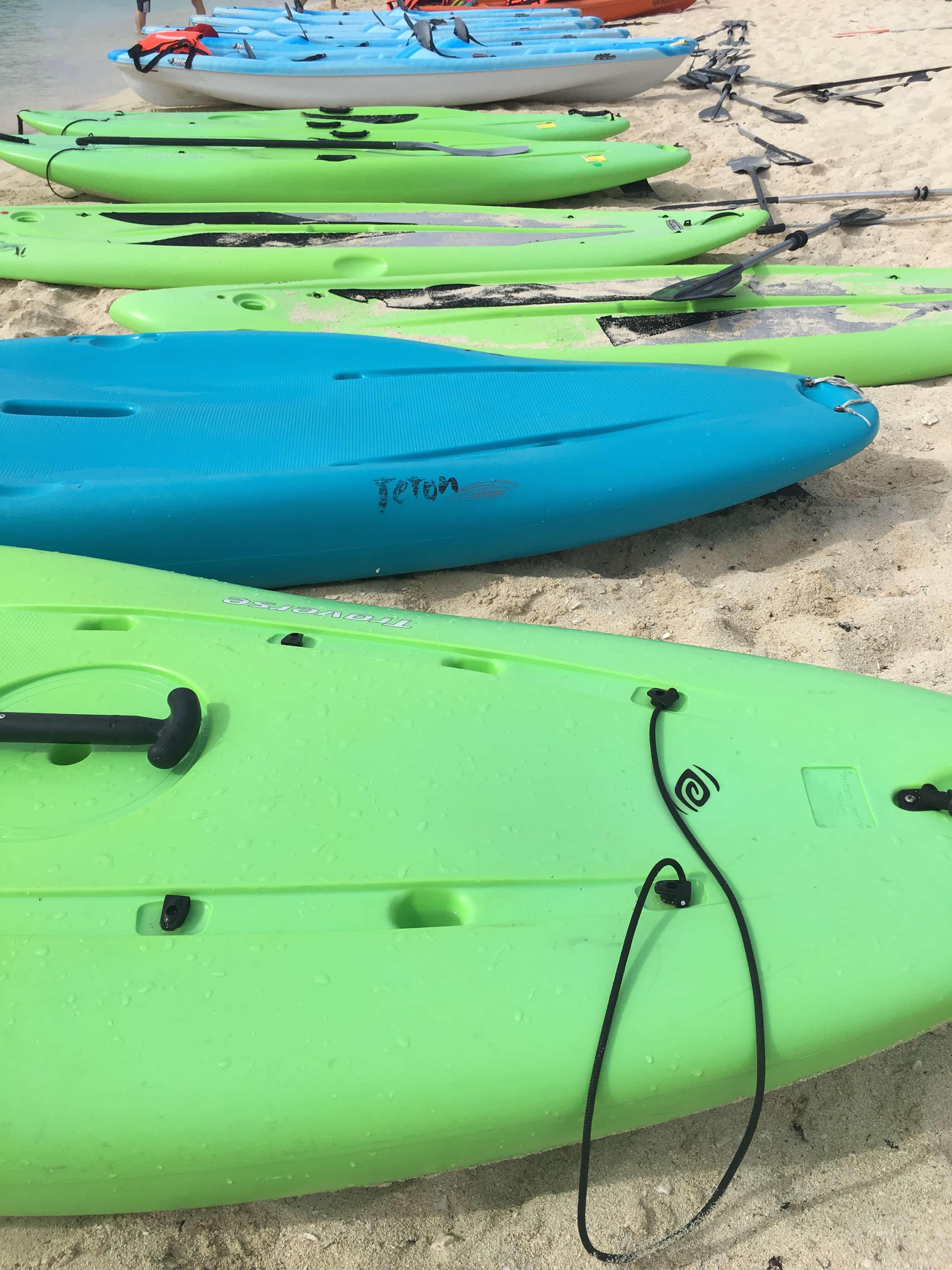 9 Reasons Cruising the Carnival Magic Good for Adults - Cozumel Paddleboard