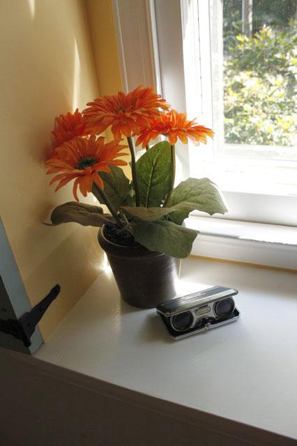 flowersincorner