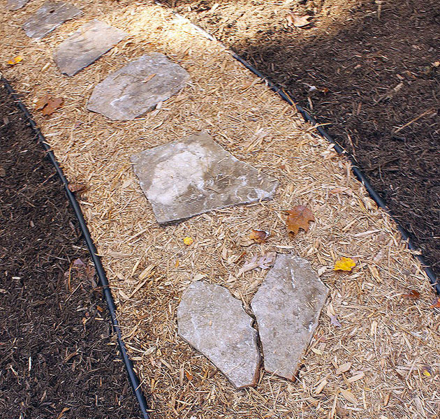 stones sitting in mulch