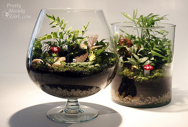 Make Your Own Terrarium And Save Hundreds Of Dollars Pretty