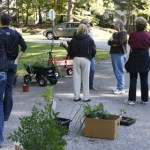 Landscaping for FREE or How to Organize a Plant Swap