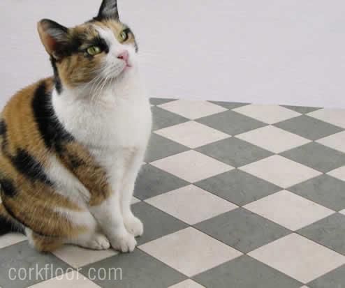 cat_on_cork_floor
