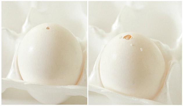 Faux Robin's Egg Spring Nest   Pretty Handy Girl