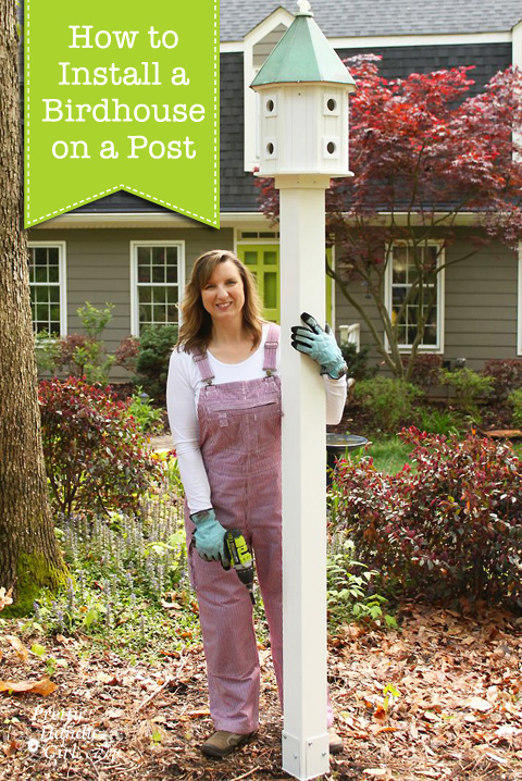 How To Install A Birdhouse On A Post
