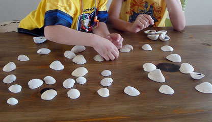 Sea Shell Memory Game | Pretty Handy Girl