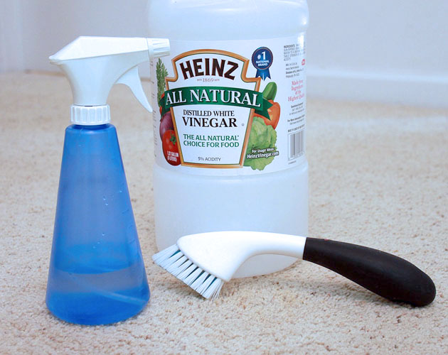 10 DIY Frugal Cleaners | Pretty Handy Girl
