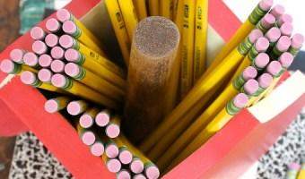 DIY Apple Pencil Holder | Pretty Handy Girl