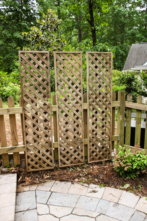 create a living wall lattice privacy