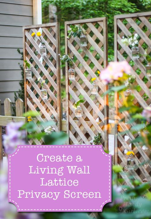 create a living wall lattice privacy screen