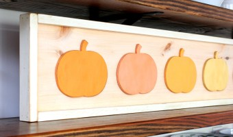 DIY Framed Pumpkins | Pretty Handy Girl