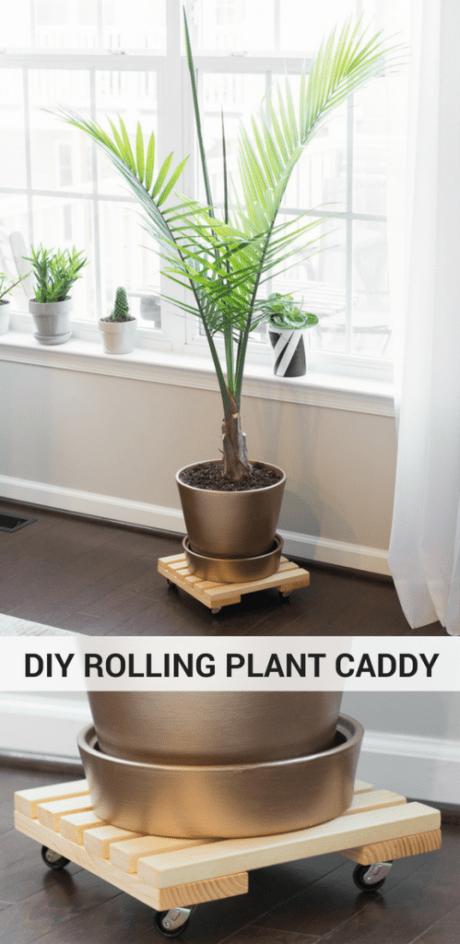 DIY Rolling Plant Caddy by Brittany Goldwyn-1