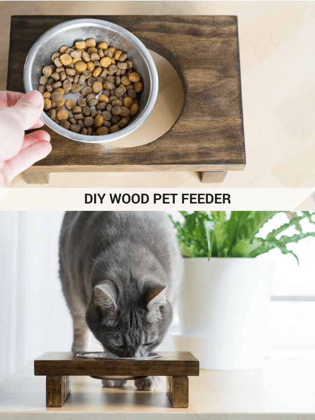 Learn how to make a wooden raised pet feeder.