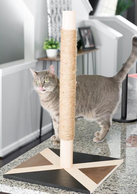 Modern Cat Scratcher DIY
