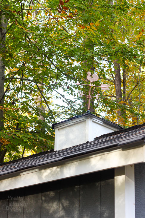 Cute Shed Cupola and Weathervane