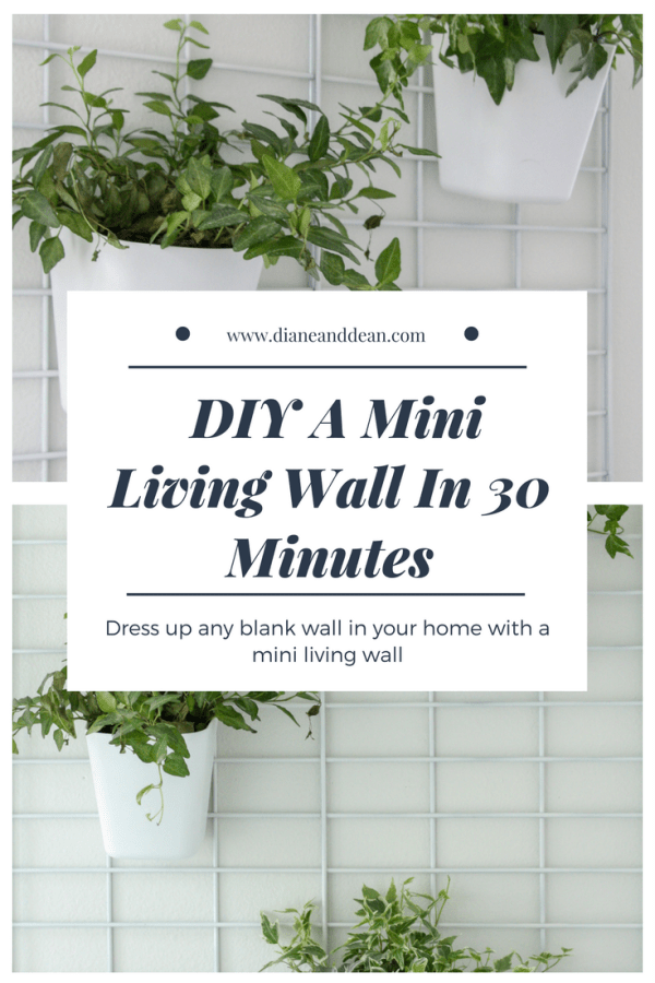 DIY living wall tutorial