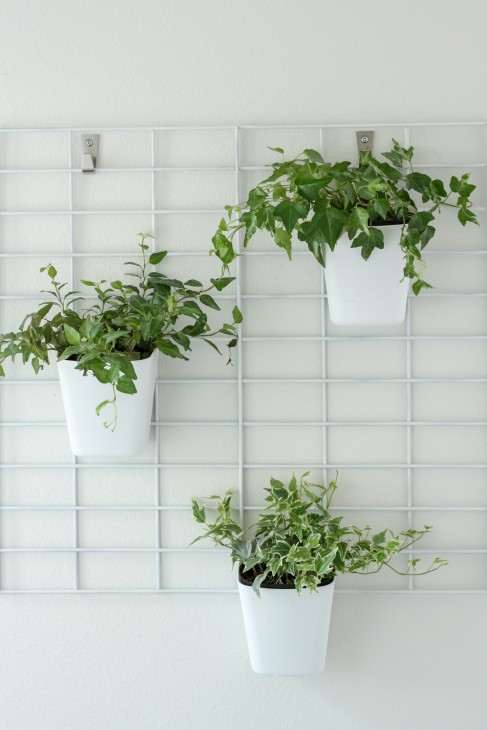 Diy living wall planter by pretty handy girl