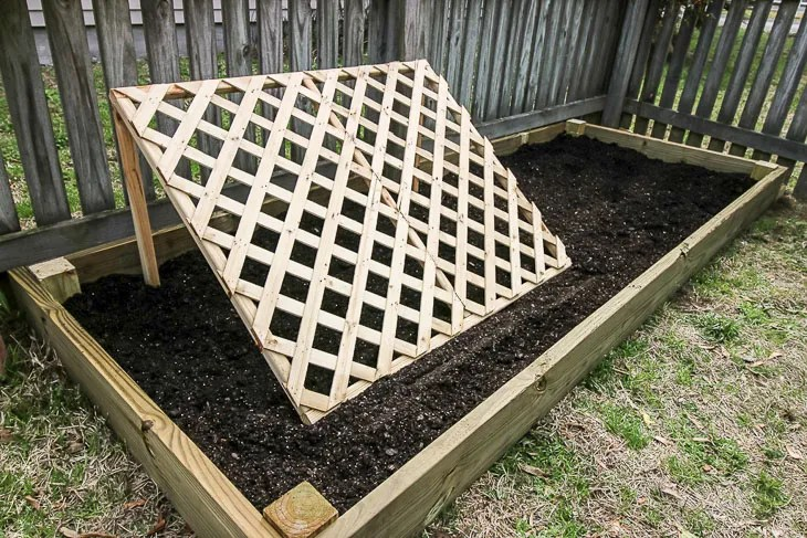 How to build a Raised Garden with Cucumber Trellis