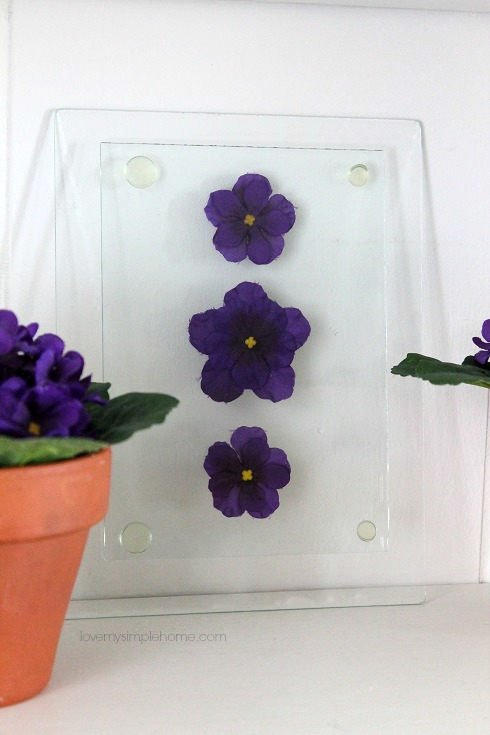 Pressed faux flowers behind glass