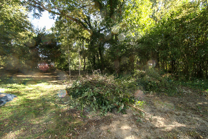 piles of brush for yard waste