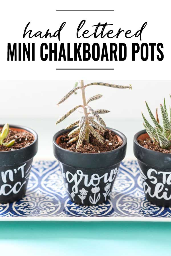 Hand lettered mini chalkboard planters