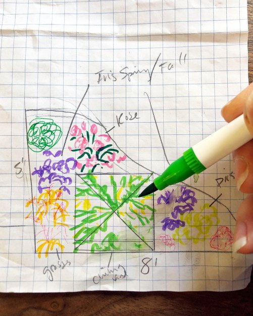 flower bed sketch on graph paper