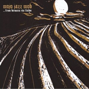 Mojo Jazz Mob – ...From between the Fields   (c) Julia Eckel