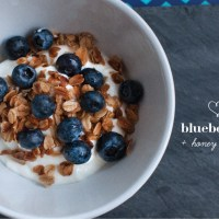 Flavor Combination to Love: Blueberries + Honey Granola