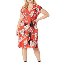 Adrianna Papell Women's Plus Size Paisley Floral Draped Aline, Red Multi, 16
