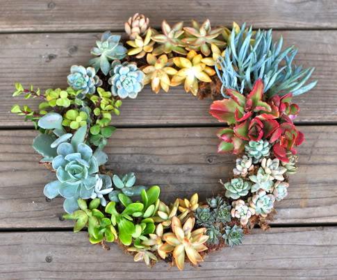 Vibrant Living DIY Spring Succulent Wreath Step-By-Step Tutorial via Pretty Prudent