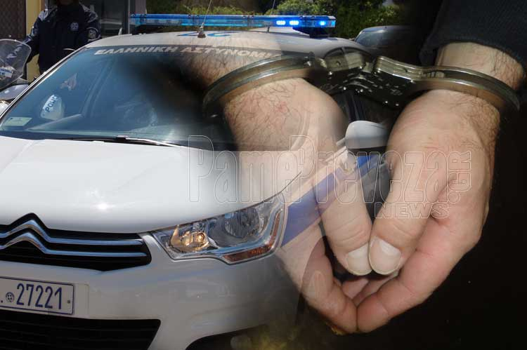 """""""Επάγγελμα… κλέφτης"""" – Συλλήψεις στην Πρέβεζα για εκκρεμείς αποφάσεις_5e04fa87157ab.jpeg"""